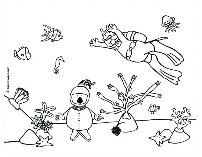 643x500 Coral Reef Coloring Pictures Ocean Coral Coloring Pages Pics Coral
