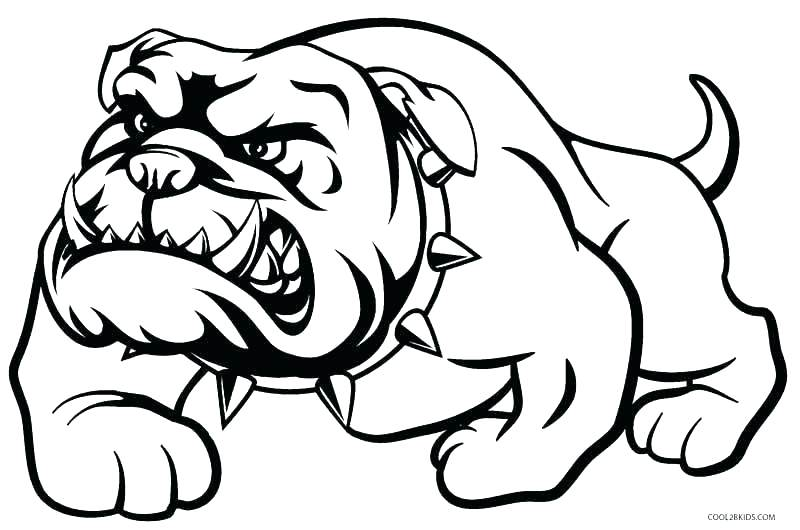 800x530 Corgi Coloring Pages French Bulldog Coloring Pages Top Rated