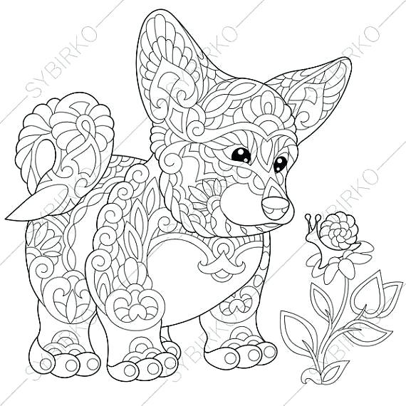 570x570 Corgi Colouring Pages Corgi Coloring Pages Corgi Coloring Pages