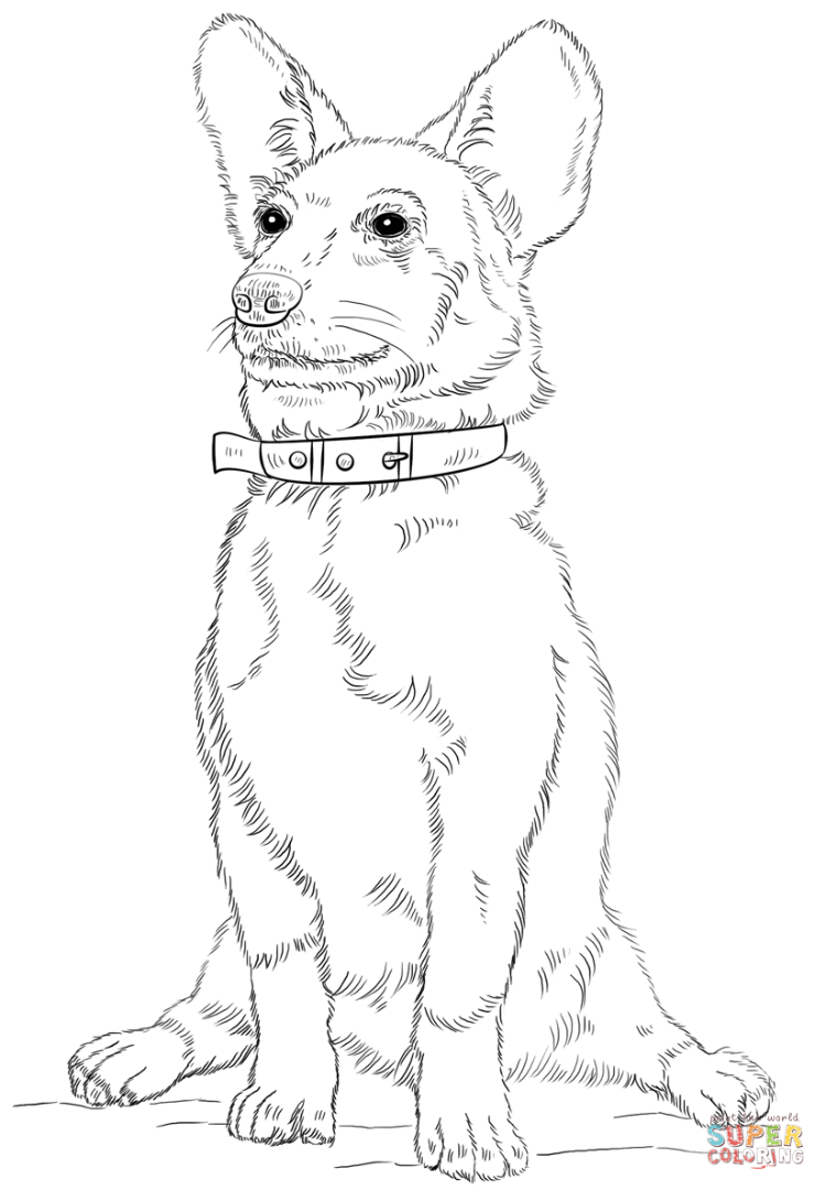 750x1080 Corgi Coloring Pages Download And Print For Free