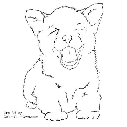 500x500 Lovely Corgi Coloring Pages Coloring Ws