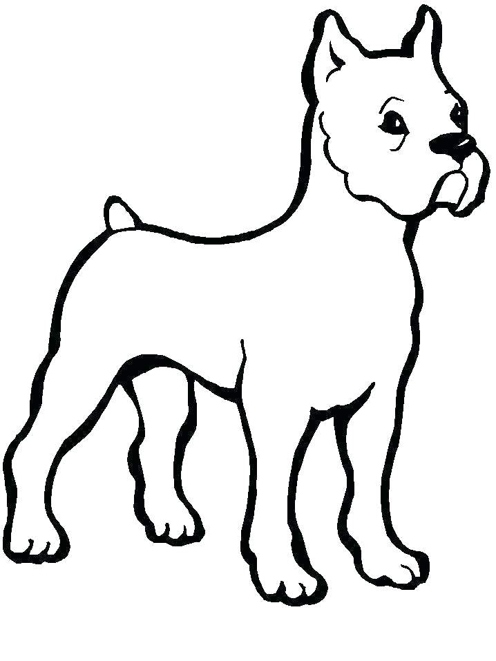 718x957 Colouring Pages Of Dogs And Cats Corgi Coloring Dog Radiorebelde