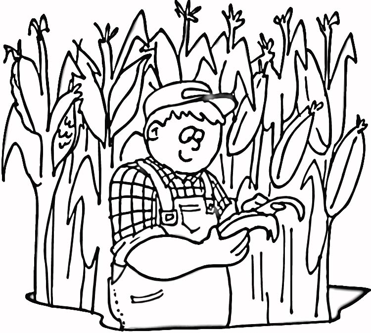 750x673 Corn Field Coloring Page Corn Stalks Coloring Pages Field