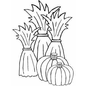 300x300 Cornstalks And Pumpkins Coloring Page