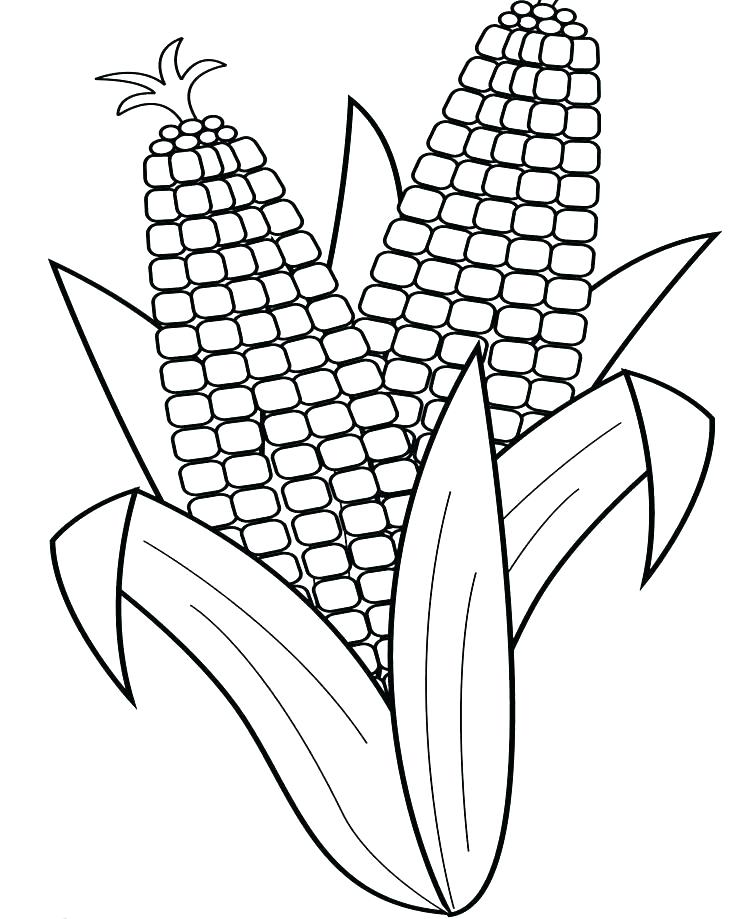747x919 Corn Color Page S Corn Stalk Color Page