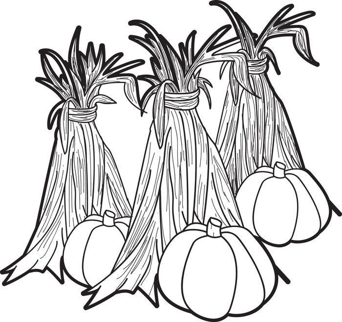 700x658 Pumpkins Corn Stalks Coloring Page Corn Stalks, Gourds