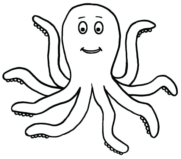 600x527 Octopus Animal Coloring Pages Happy Legged Octopus Sea Animals