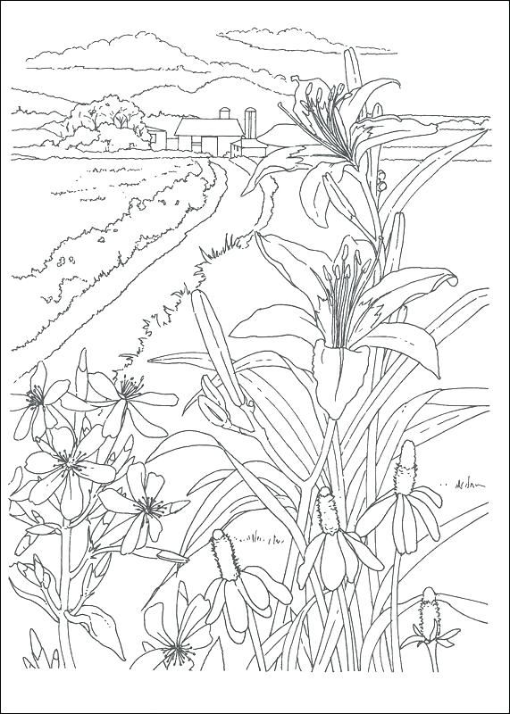571x800 Country Coloring Pages Country Coloring Pages Country Scenes