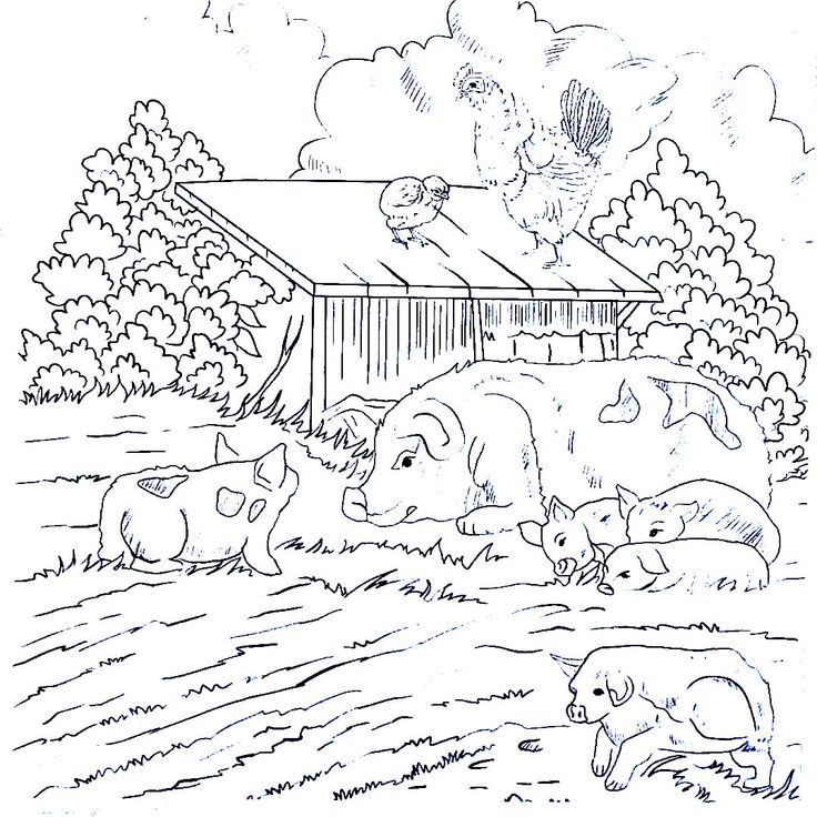 736x736 Best Living In The Country Coloring Book Pages Images