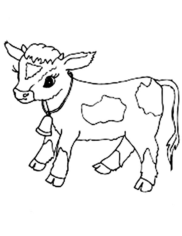 600x777 Ba Cow Coloring Pages Ba Cow Coloring Page Netart Calf Coloring