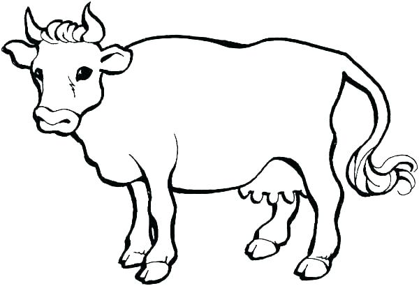 600x410 Coloring Page Cow Cow With Calf Cow With Calf Coloring Page
