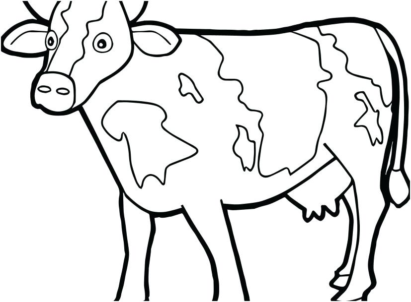 827x609 Coloring Pages Cute Baby Animals Cow Free Printable Of Cows Calf