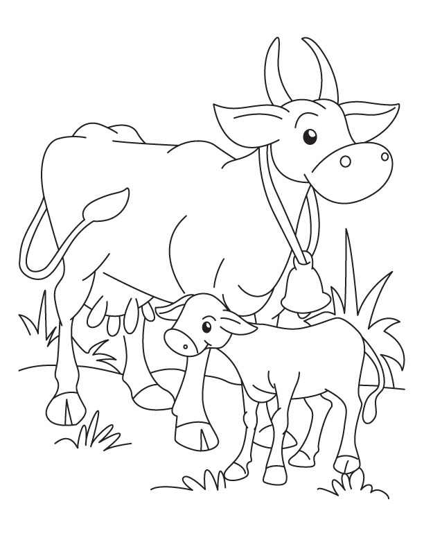 612x792 Cow And Calf Coloring Pages