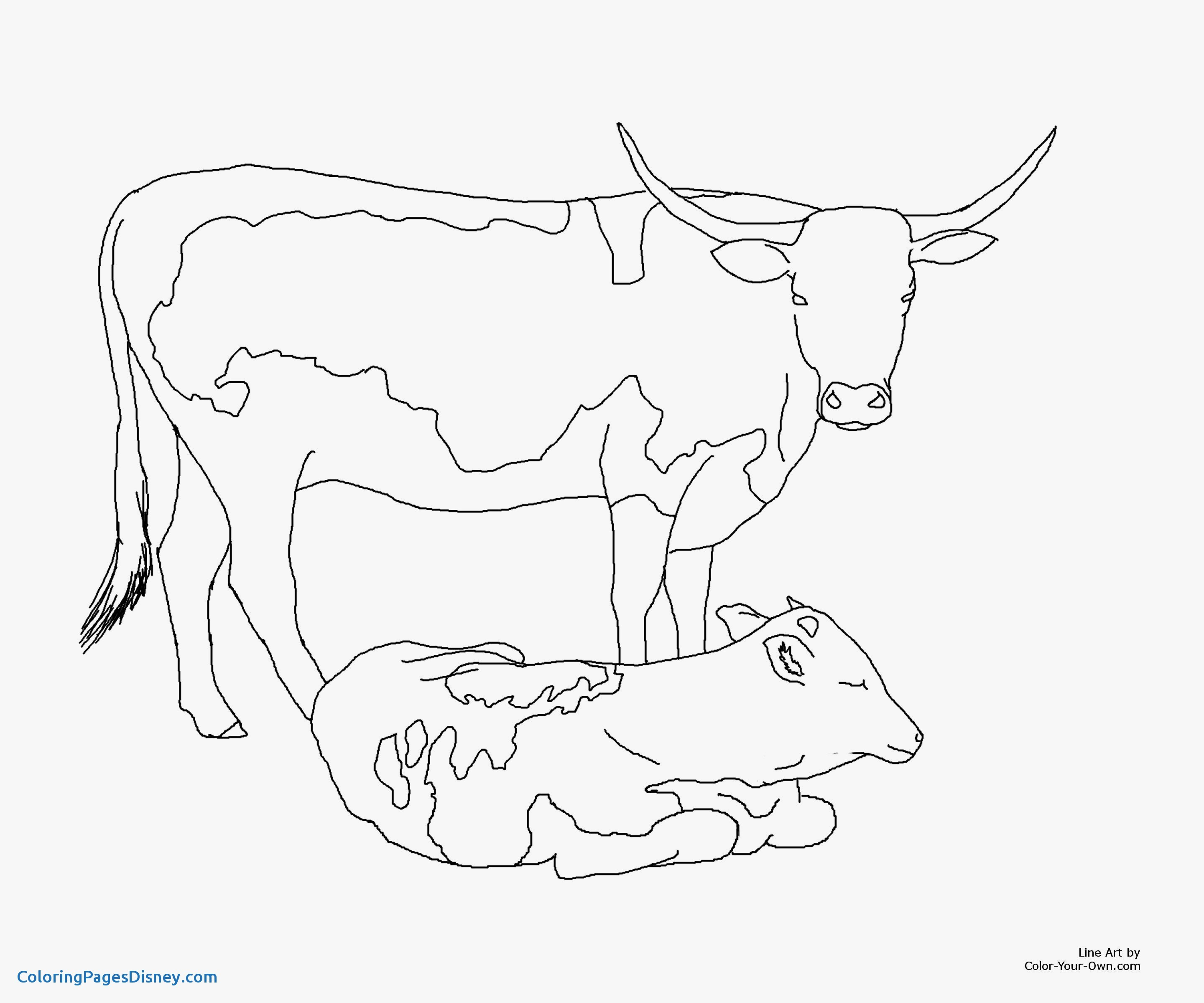 Cow And Calf Coloring Pages At Getdrawings Com Free For Personal