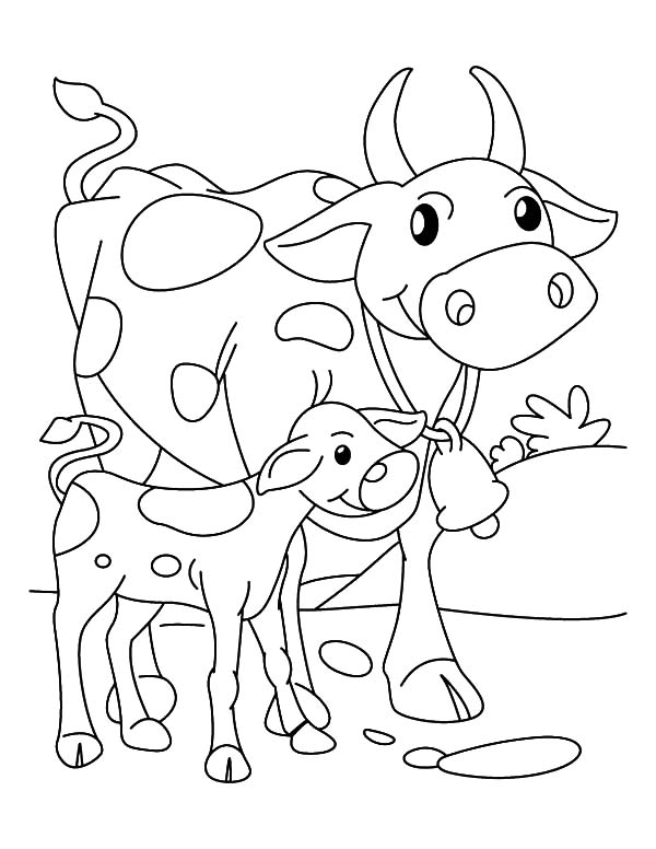 600x776 Calf Coloring Pages