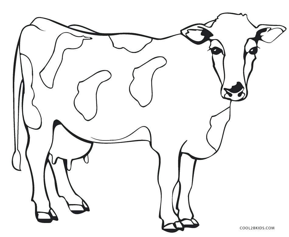 950x778 Cow Coloring Pictures Coloring Page Cow Cartoon Of Smiling Cow