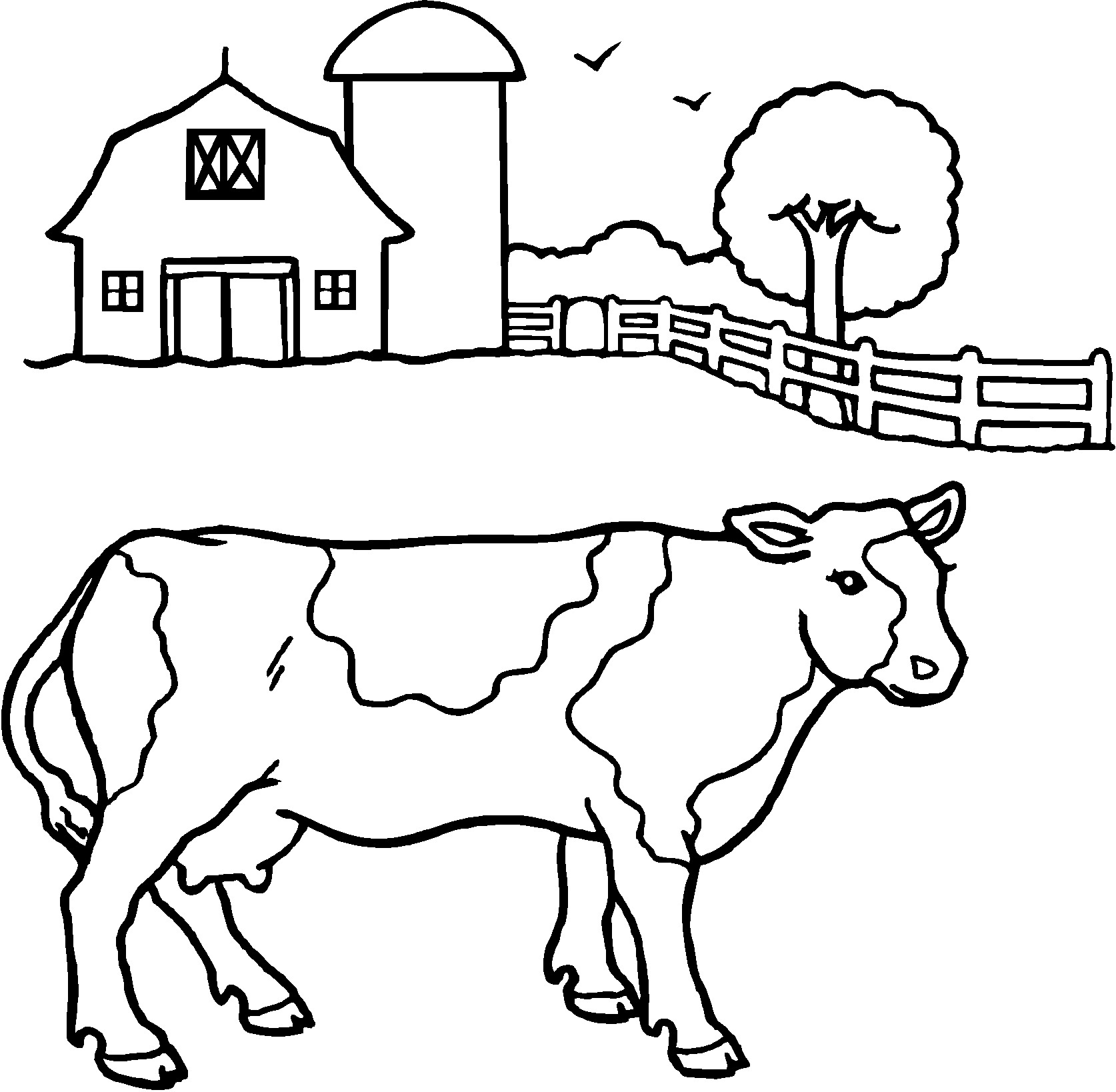 1674x1638 Cow Coloring Page Pages Kids Tunisientunisie Inside
