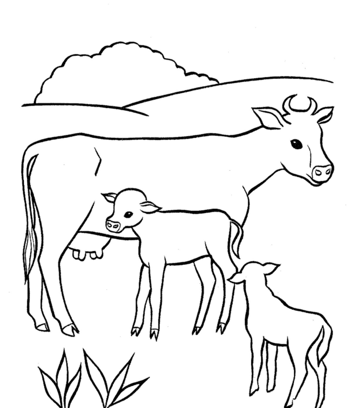 1193x1390 Cow Coloring Pages For Adults Drawn Page Pencil And In Color