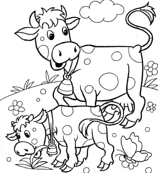 536x587 Coloring Pages Cow Coloring Page Of A Cow Cow With Beautiful