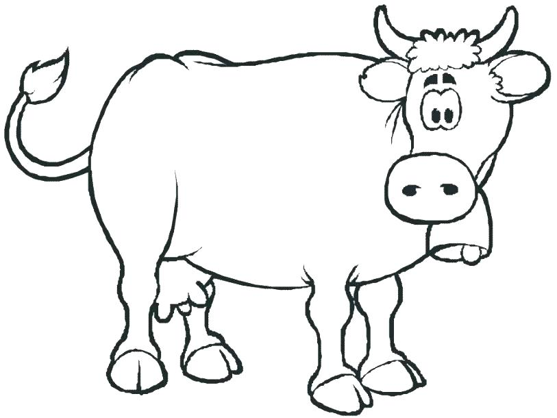 813x610 Cows Coloring Pages Best Party On The Farm Images On For Cow