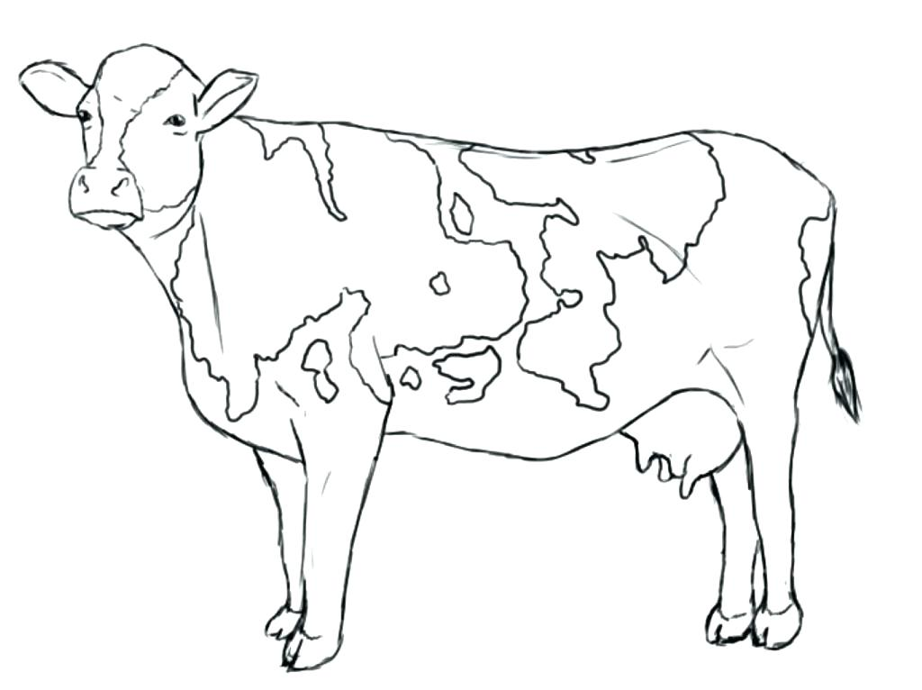 1024x766 Inspiring Cows Coloring Pages Free Printable Cow Cattle Coloring