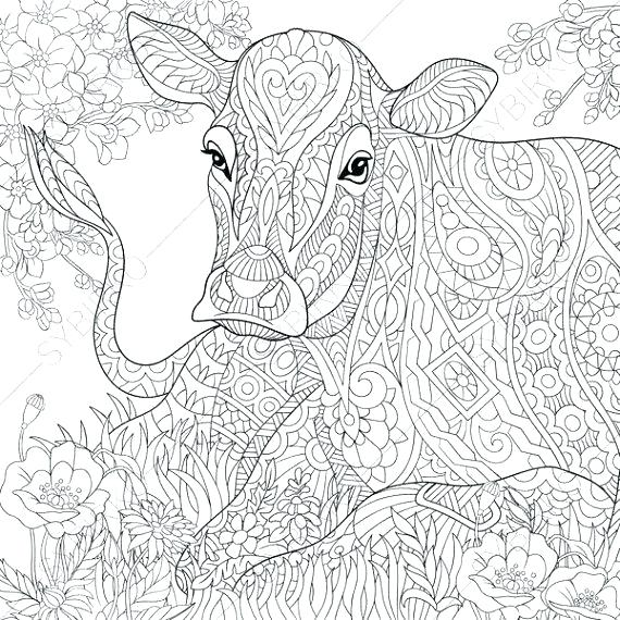 570x570 Cow Printable Coloring Pages