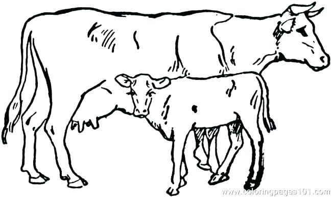 650x385 Coloring Pictures Of Cows Dairy Cows Coloring Pages Coloring Pages