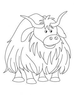 236x305 Image Result For Highland Cow Colouring Page Highland Cows