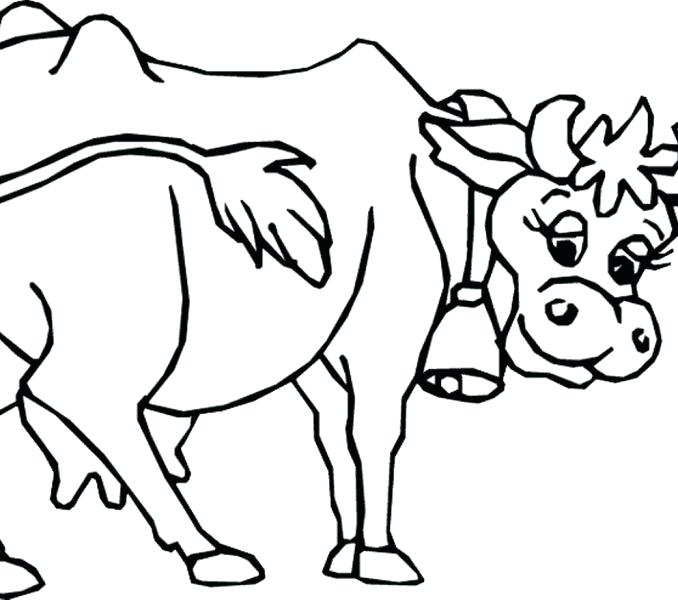 678x600 Cattle Coloring Pages Interesting Great Cow Coloring Pages Free