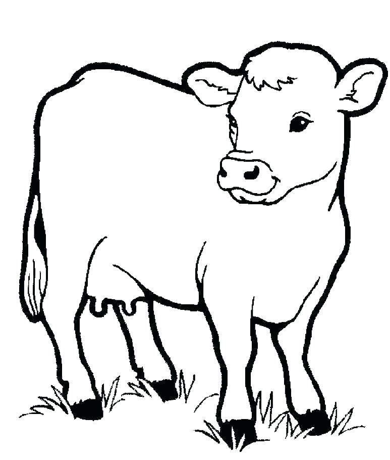 773x910 Coloring Pages Cow Cute Little Cow Coloring Page Coloring Pages