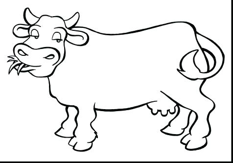 Cow Coloring Pages Free Printable at GetDrawings com | Free for