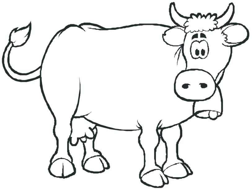 813x610 Cow Coloring Page