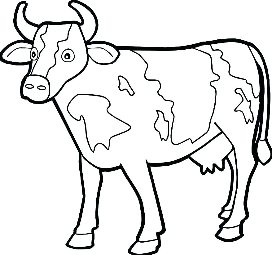 878x822 Coloring Pages Of Cows Coloring Pages Cow Cow Coloring Page Cow