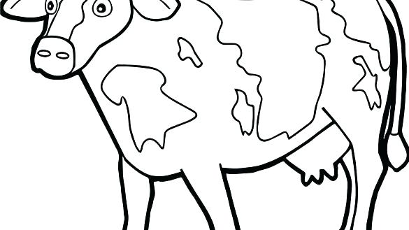 585x329 Cow Coloring Page Cow Coloring Pages Healthy Cow Coloring Page Cow