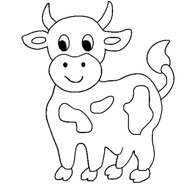 600x600 Cute Little Cow Coloring Page