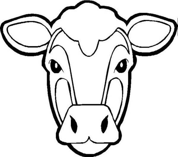 600x529 Picture Of Cow Head Coloring Page