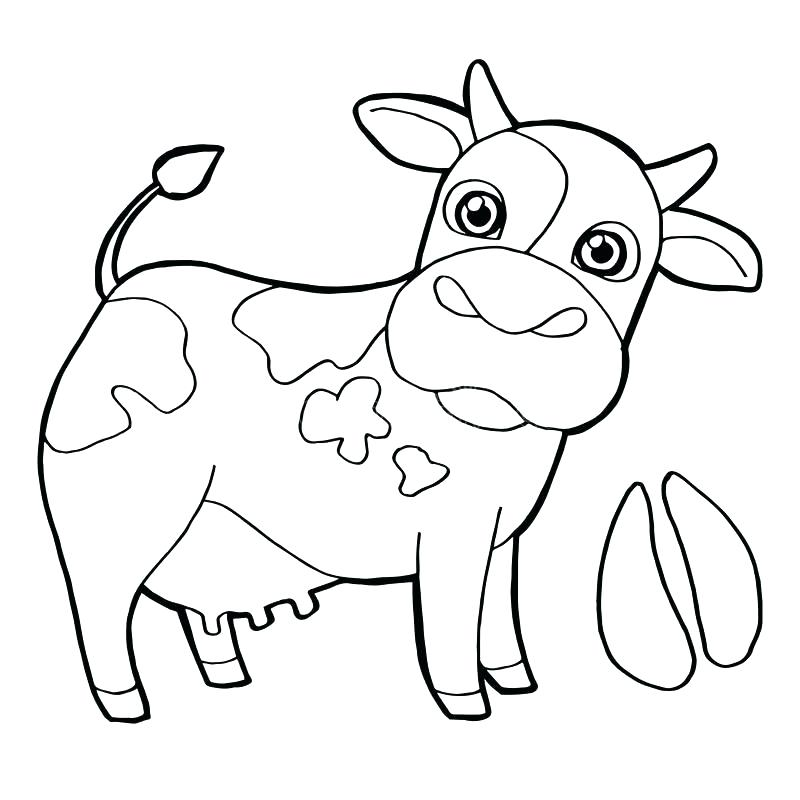 800x800 Coloring Page Cow Cow Printable Coloring Pages Download Cattle