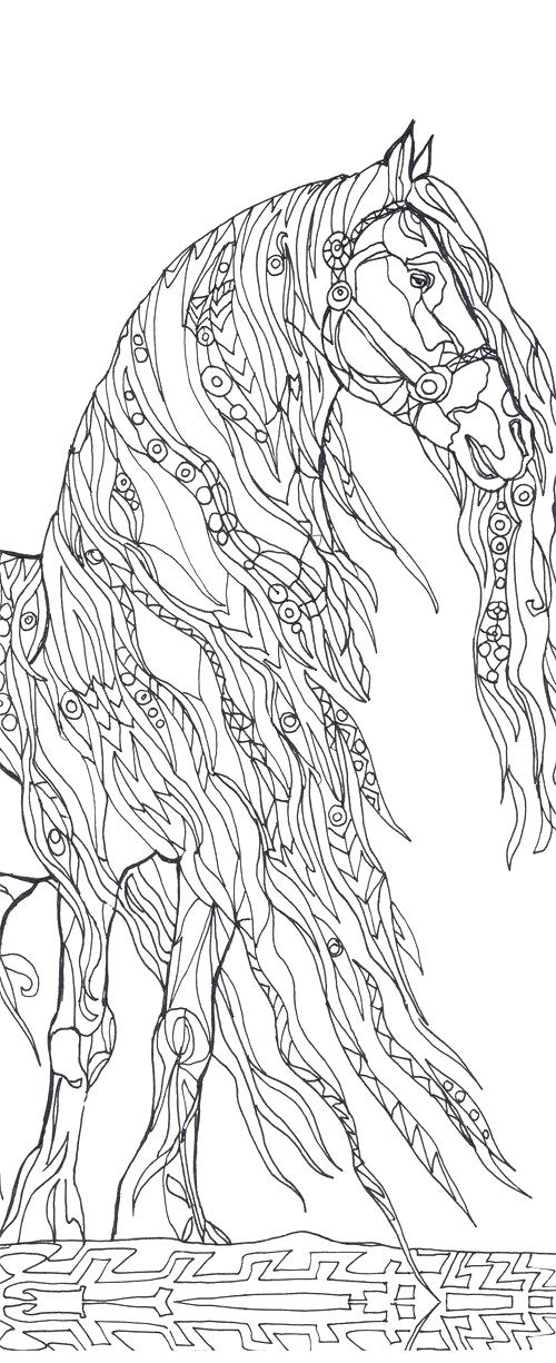 500x1225 Western Horse Coloring Pages Professional