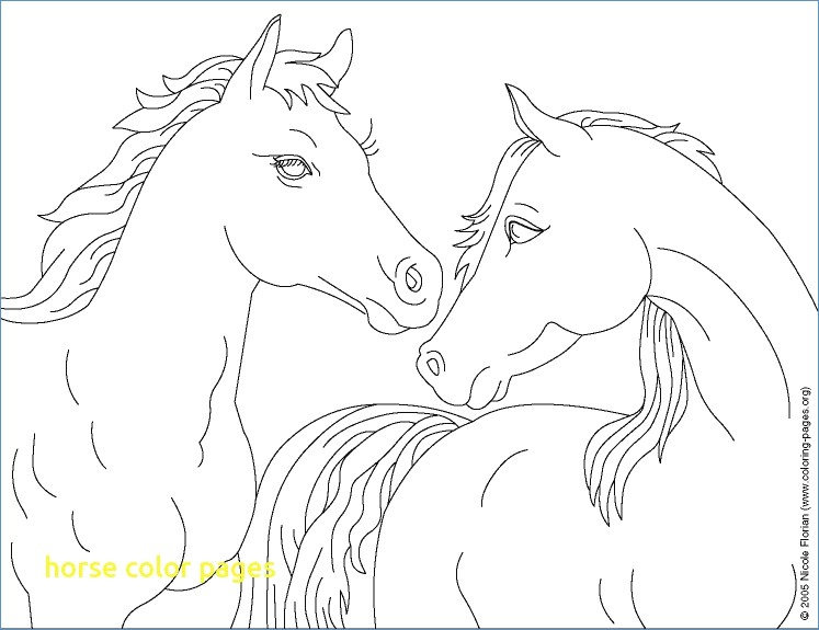747x575 Cowboy Horse Coloring Page For Boys