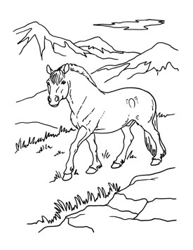 275x356 Amusing Coloring Page Of A Horse Preschool In Tiny Horses Coloring