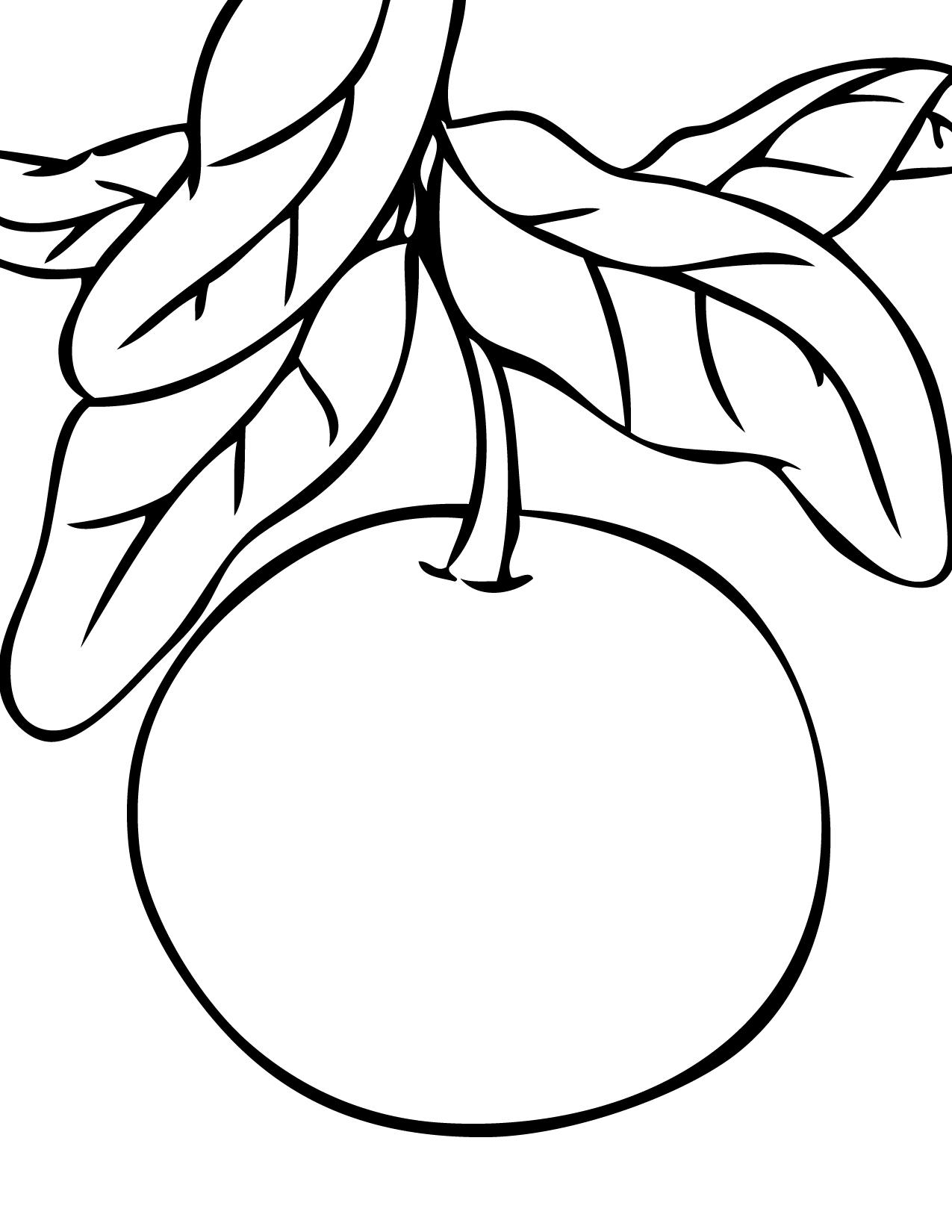 1275x1650 Fresh Grapefruit Coloring Pages Design Printable Coloring Sheet