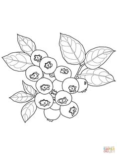 236x314 Grapes Coloring Pages Printing, Template And Embroidery
