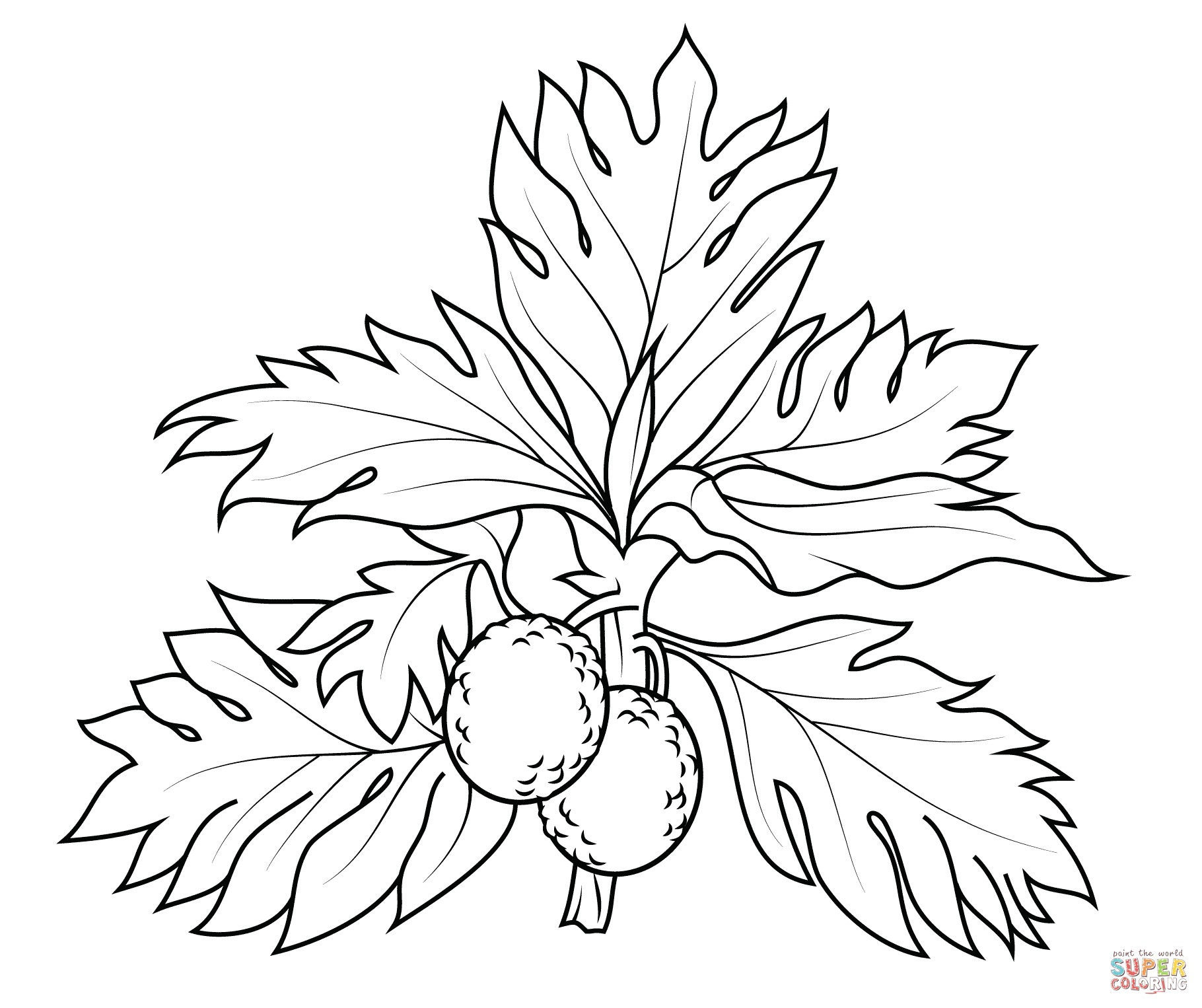1820x1526 Clanberry Fruits And Berries Coloring Pages For Kids Awesome Best
