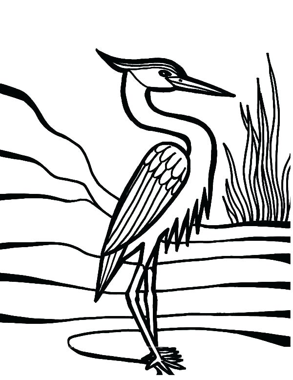 600x778 Peacock Feather Coloring Page Feather Coloring Page Crane Bird