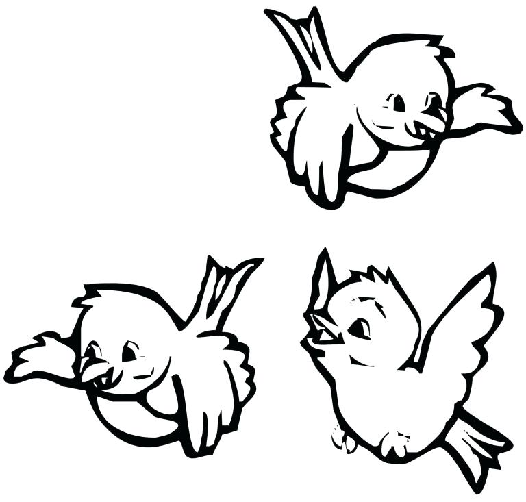768x733 Bird Coloring Pages For Preschoolers Download Bird Coloring Pages