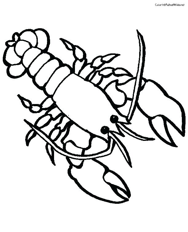 Crawfish Coloring Page At Getdrawings Com Free For Personal Use