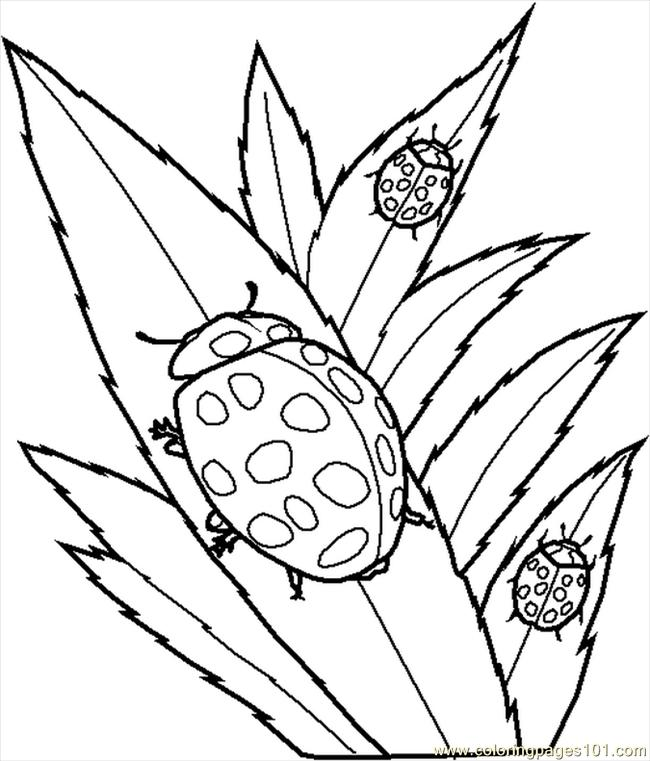 650x761 Create Your Own Coloring Book Online Other Kids Coloring Pages