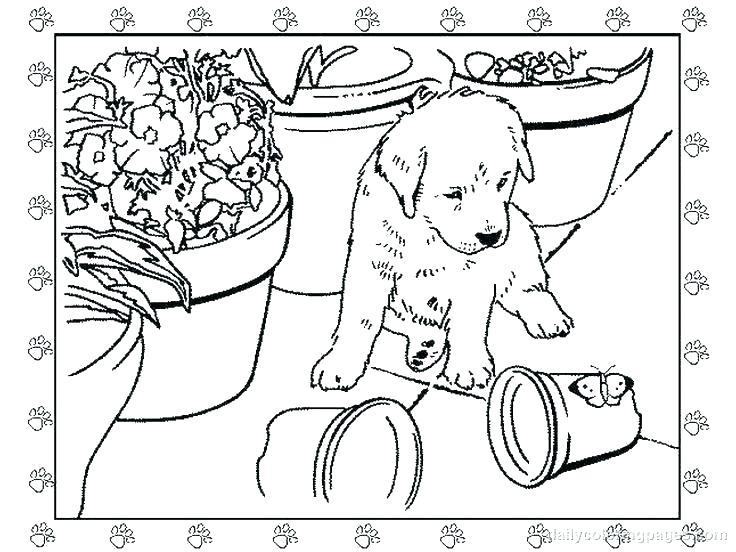 736x552 Creative Coloring Pages Creative Coloring Pages For Adults Color