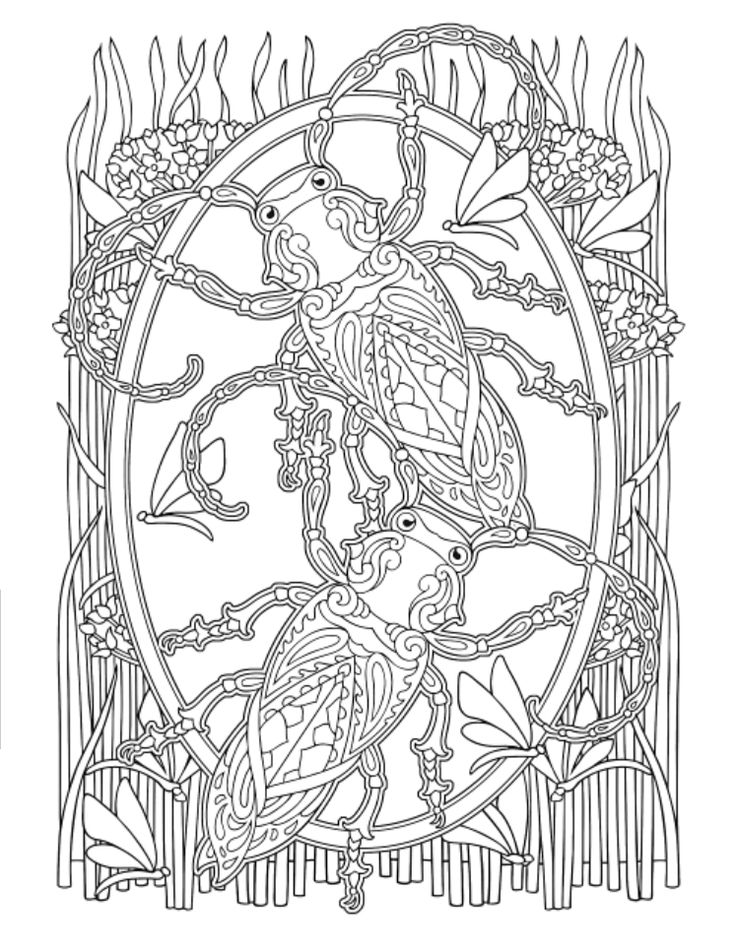 736x950 Creative Haven Awesome Insect Coloring Pages