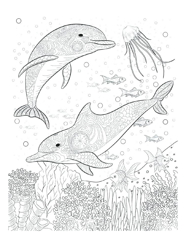 736x952 Creative Coloring Pages For Adults